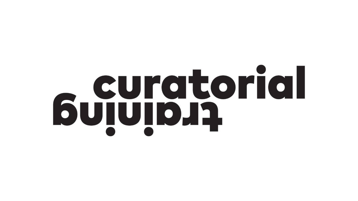 The Curatorial Training